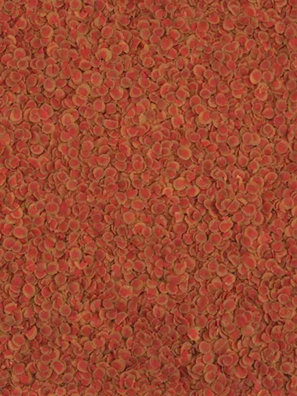 Tetra pro colour 100 ml