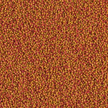 Tetra cichlid colour mini 500 ml