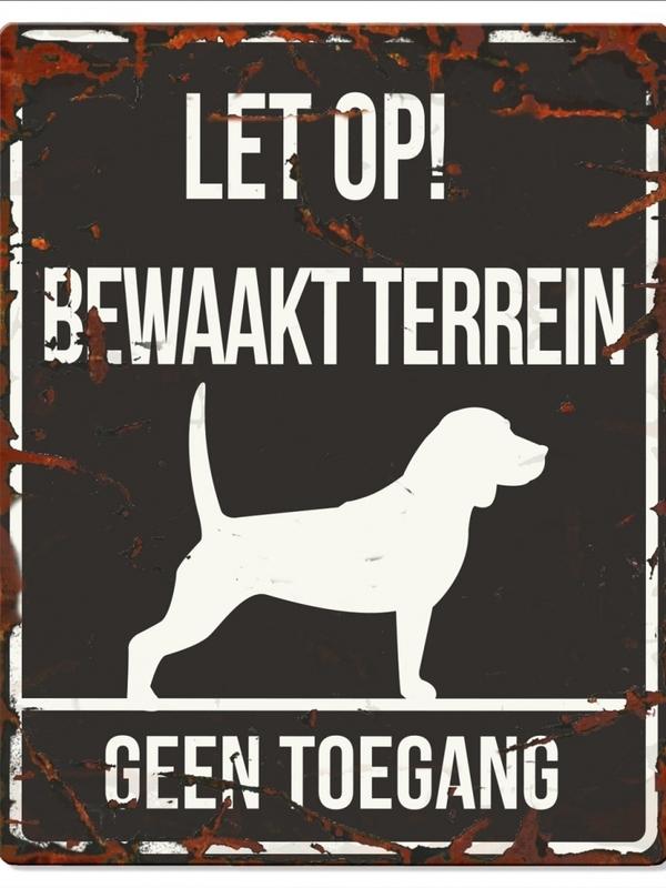 Warning sign square beagle n Zwart
