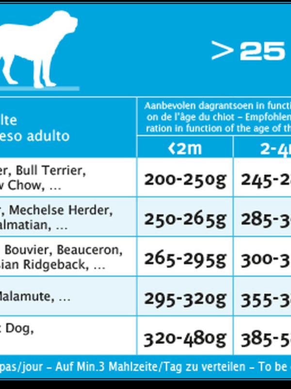 Euro-premium large puppy chicken & rice 4 kg