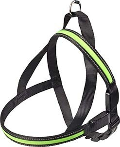 Safety harness led green 50-65cm 25mm