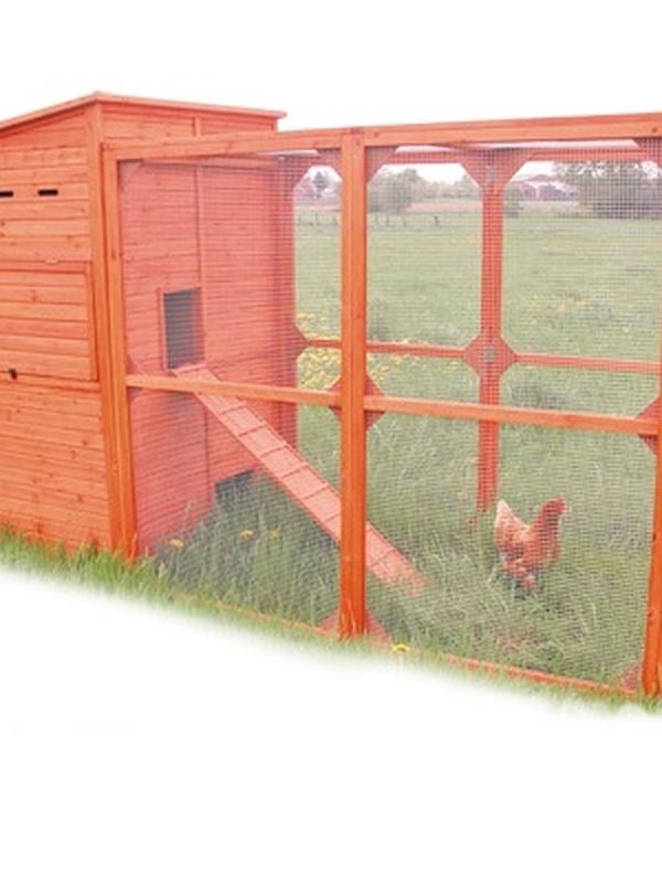 Chicken coop san diego