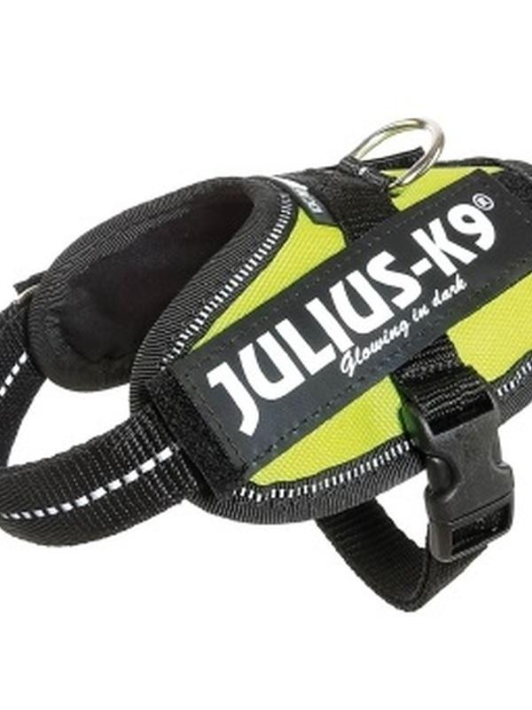 Julius K9 IDC Powertuig Baby 2 Neon Groen 33-45 cm