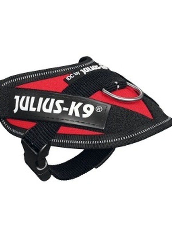 Julius K9 IDC Powertuig Baby 1 Rood 29-36 cm