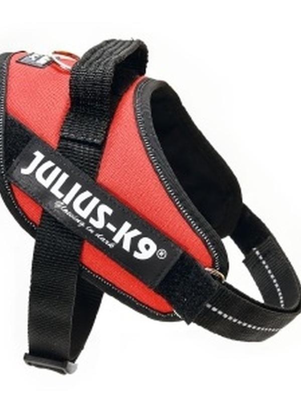 Julius K9 IDC Powertuig Mini Mini Rood 40-53 cm