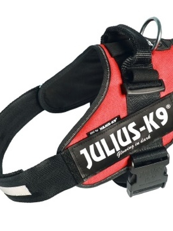 Julius K9 IDC Powertuig Maat 1 Rood 63-85 cm
